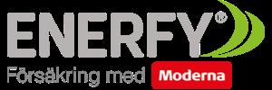enerfy_logo